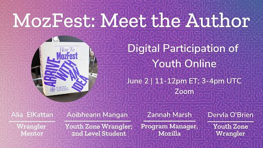Meet the Authors - Digital Participation of Youth Online